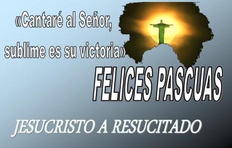 Imágenes De Felices Pascuas Con Frases Para El Domingo De