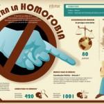 Imágenes e información del Día contra la Homofobia y la Transfobia