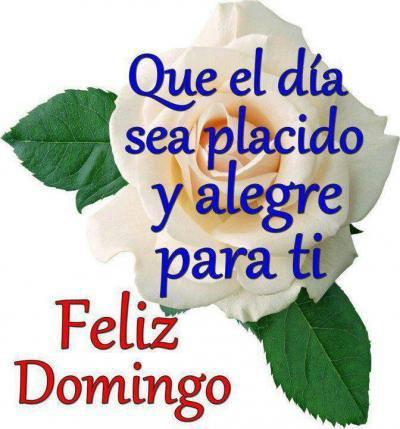 Feliz Domingo - Buen Domingo (3)