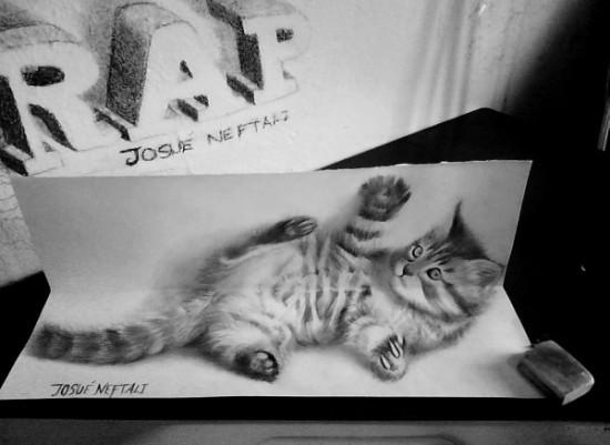 cat drawing 3d
