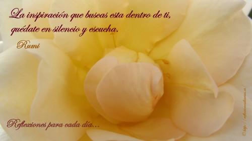 frase de Rumi