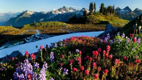 imágenes de paisajes bonitos (21)