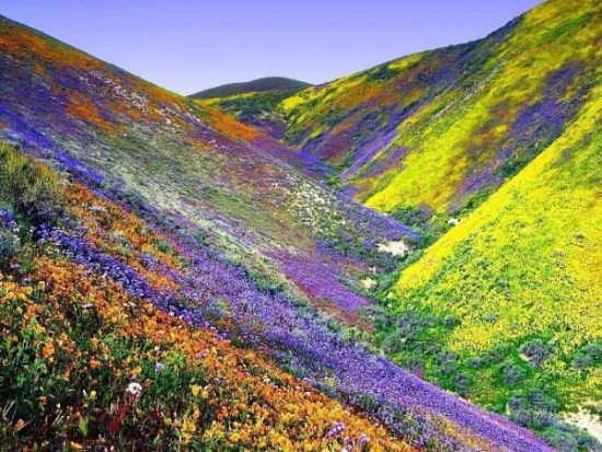 imágenes de paisajes bonitos (25)