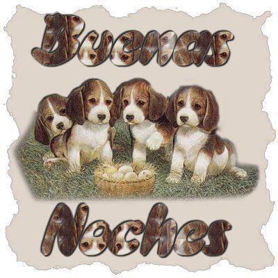 imagen con mensaje y frase de buenas noches (3)