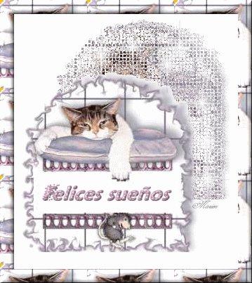imagen con mensaje y frase de buenas noches (58)