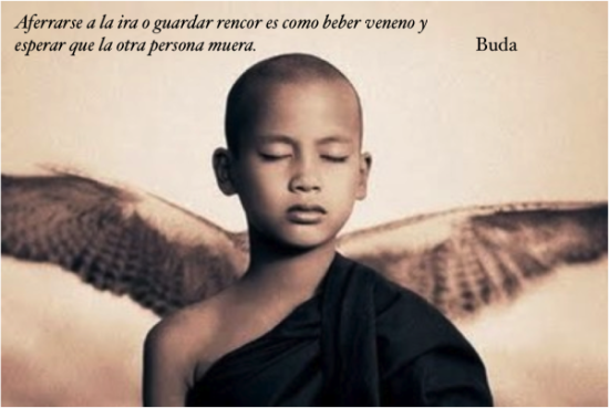 Buda frases Sabias (1)