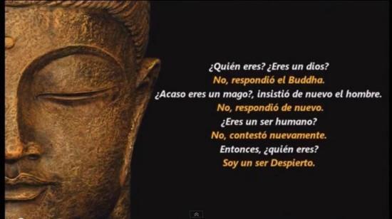 Buda frases Sabias (3)