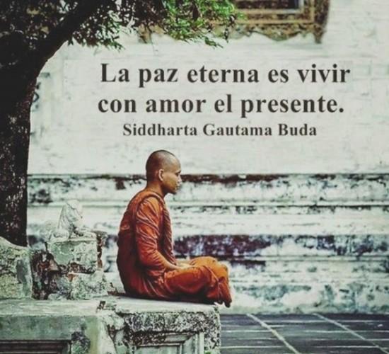 Buda frases Sabias (5)