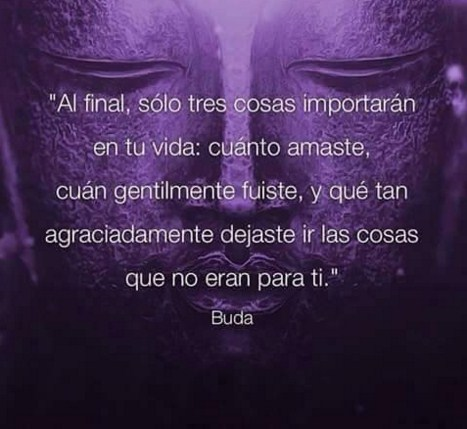 Buda frases Sabias (8)