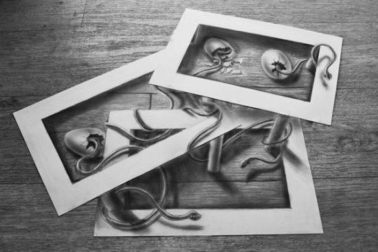 Dibujo blanco y negro 3D a lápiz (3)
