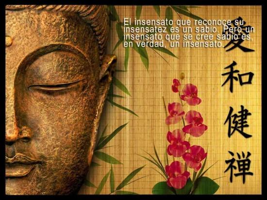 Frases Buda mensajes (2)