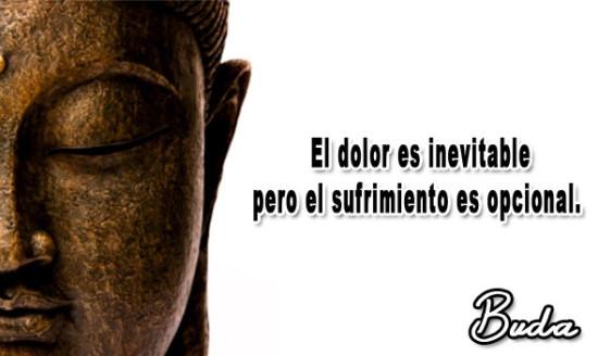 Frases Buda mensajes (8)