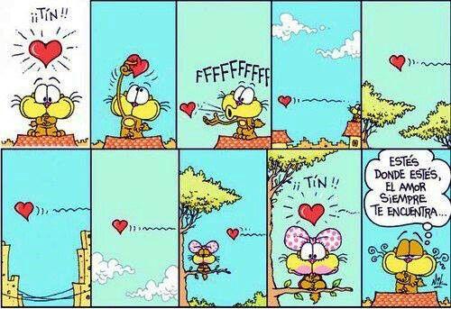Frases de Amor Gaturro  (5)