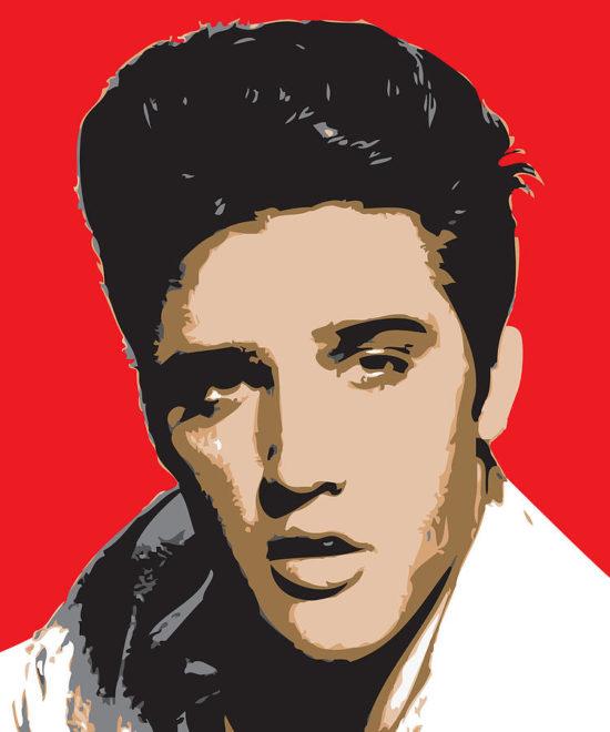 Pop Art Musicos famosos (7)