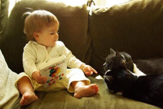 bebes y niños con gatos  (11)