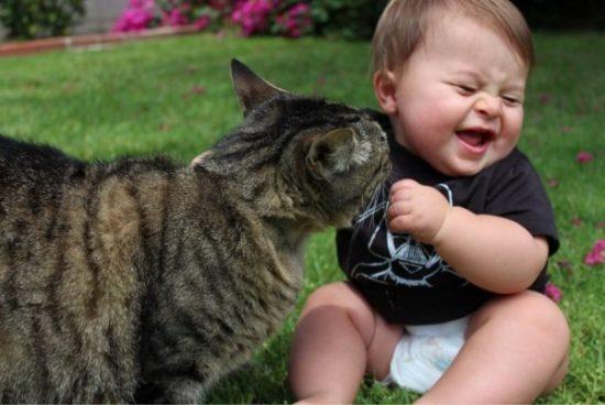 bebes y niños con gatos  (13)