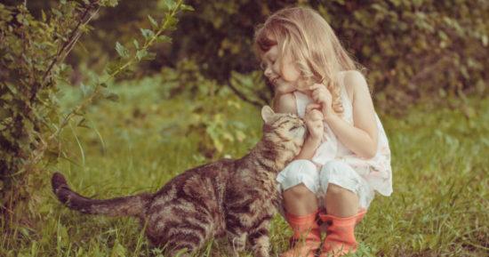 bebes y niños con gatos  (15)