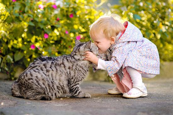 bebes y niños con gatos  (17)