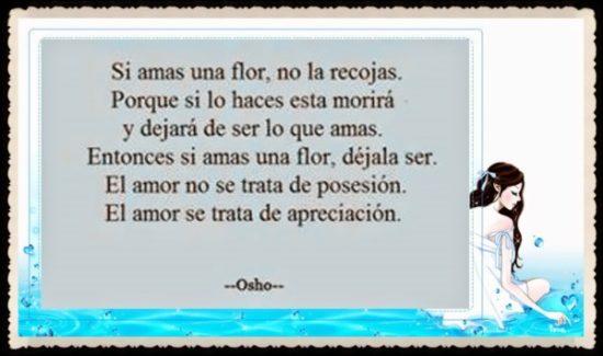 frase de Osho (18)