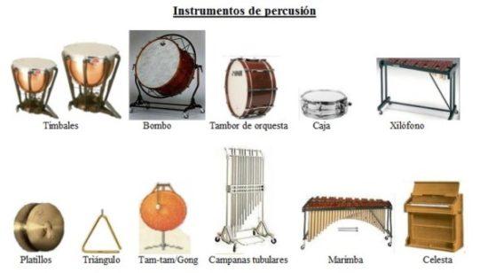 instrumentos musicales de percusion o acusticos (14)
