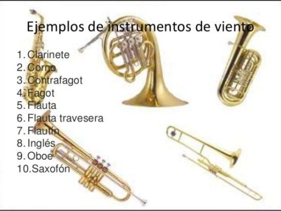 instrumentos musicales de viento (7)