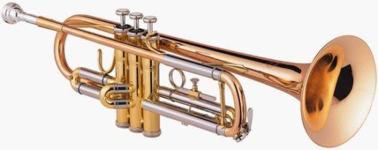 instrumentos musicales de viento (8)
