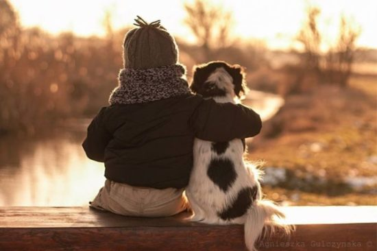 niños y bebes con perros  (12)