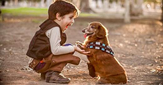niños y bebes con perros  (15)