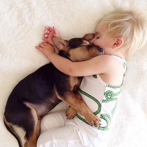 niños y bebes con perros  (20)