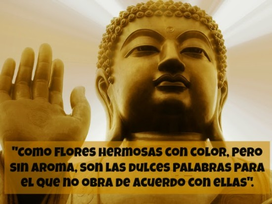 pensamientos de Buda (10)