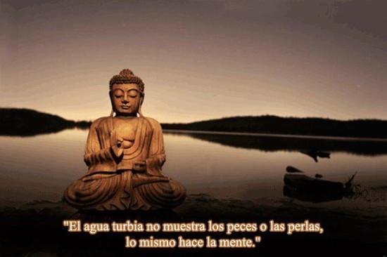 pensamientos de Buda (7)