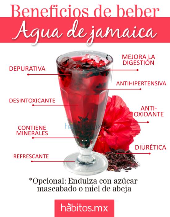 té con agua de jamaica beneficios