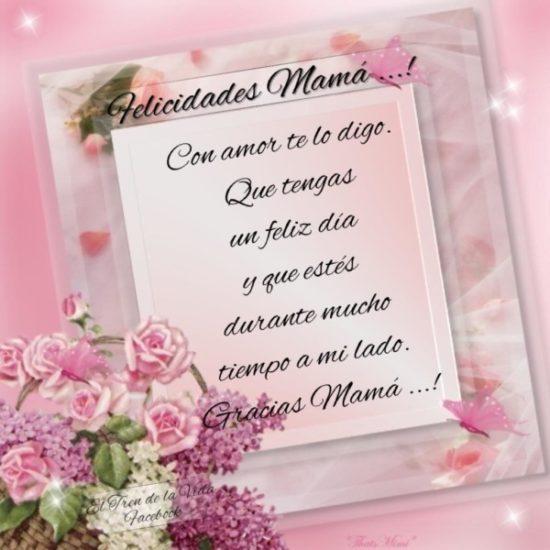 Felíz día de la Madre - frases  (19)