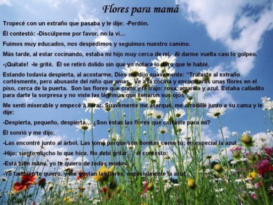 Felíz día de la Madre - frases  (5)