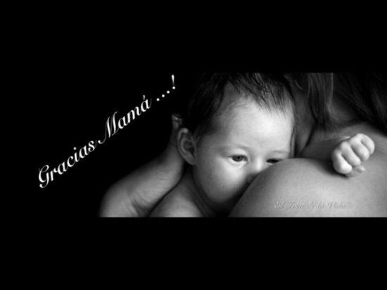 Felicidades Día de la Madre 2016 (12)