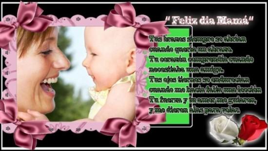 Feliz dia de la Madre - frases - mensajes  (14)