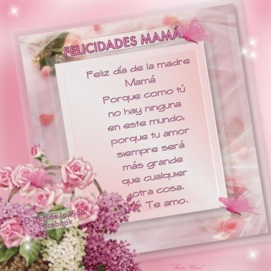 Feliz dia de la Madre - frases - mensajes  (17)