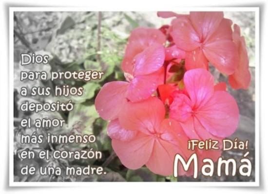 Feliz dia de la Madre - frases - mensajes  (3)