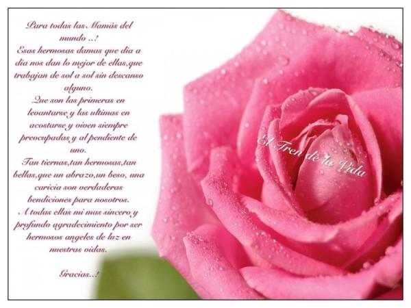Imagen Feliz Día De La Madre: Imágenes Con Frases De Felíz Día De La Madre Con