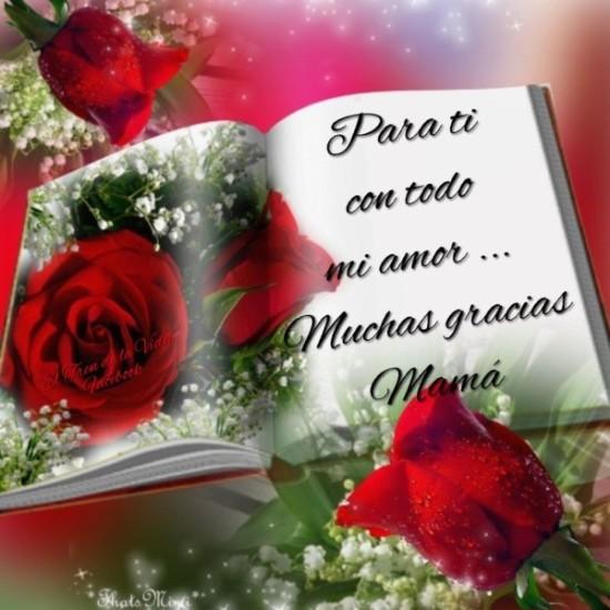 Feliz dia de la Madre - frases - mensajes  (9)