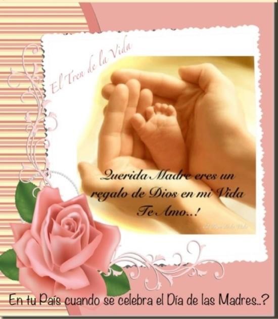 Feliz dia de la Madre imágenes frases  (12)