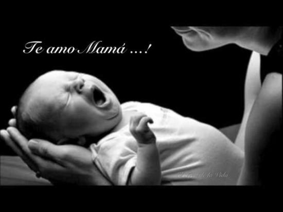 Feliz dia de la Madre imágenes frases  (16)
