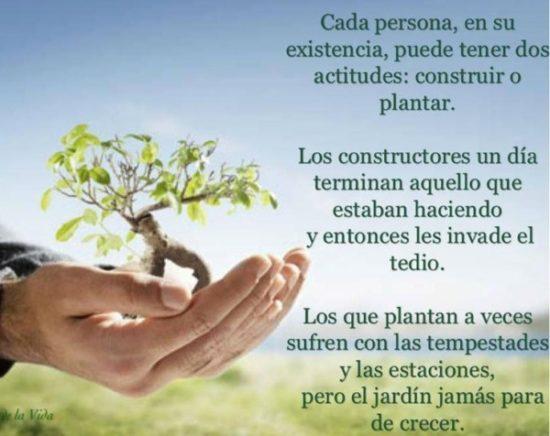 Frases Día de la Tierra  (28)