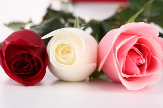 Frases con Flores de Felíz Día de la Mujer (2)