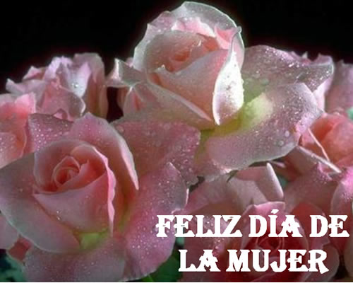 Frases con Flores de Felíz Día de la Mujer (4)
