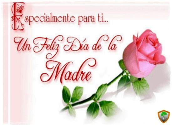 Imagenes con rosas para el Dia de la Mujer (1)