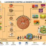 Información e imágenes del Día Mundial de Lucha contra la Desertificación y la Sequía