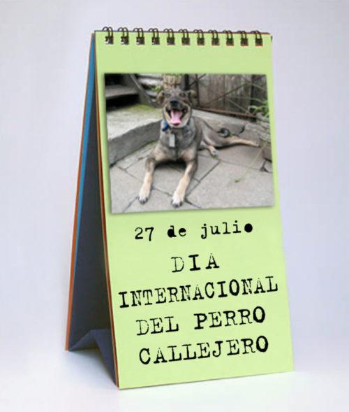 día del perro callejero  (14)