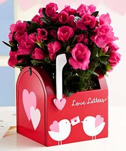 ideas-para-regalar-en-san-valentin-1