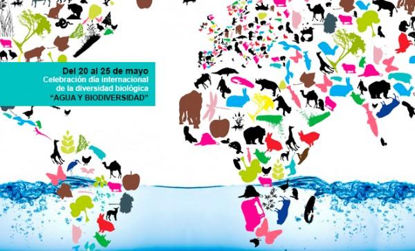 Lema Del Día De La Biodiversidad O Diversidad Biológica